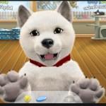 Virtual Pet Games Virtual Reality Experience